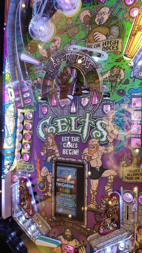 The Celts playfield